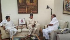 Chandrababu Naidu Holds 2nd Round of Talks with Rahul Gandhi, Sharad Pawar