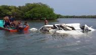 पर्यटकों को लेकर उड़ान भर रहा विमान समुद्र में गिरा, सभी यात्रियों की मौत