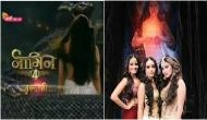 Naagin 4 Promo Out: Do you know who's the new 'naagin' in place of Surbhi Jyoti? Check out