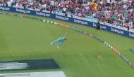 World Cup 2019: एक हाथ से इंग्लैंड के इस खिलाड़ी ने पकड़ा शानदार कैच, आंखों पर नहीं होगा यकीन!  Video