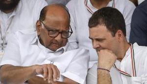 कांग्रेस-एनसीपी विलय की चर्चा, राहुल गांधी और शरद पवार ने की एक घंटे की मुलाकात