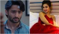 Kasautii Zindagii Kay 2 actress Erica Fernandes got this special surprise from ex-boyfriend Shaheer Sheikh's Indonesian ex