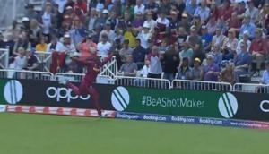 Watch: Sheldon Cottrell takes the best catch of World Cup 2019 to dismiss Steve Smith