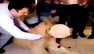 बर्थडे के दौरान शेर के मुंह पर केक लगा रहा था ये शख्स, वीडियो में देखें फिर हुआ क्या