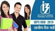 IBPS RRB 2019: ग्रामीण बैंक में निकली बंपर भर्तियां, क्लर्क, PO के 8400 पदों पर वैकेंसी