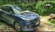 Bengaluru: Car crushed under a tree at Cubbon Park