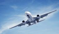 video: फ्लाइट में सामान रख रहा था यात्री, तभी केबिन खोलते लेटी मिली एयर होस्टेस और फिर...