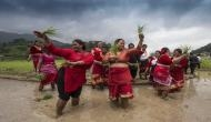 यहां कीचड़ से भरे खेत में मनाया जाता है जश्न, सालों से चली आ रही है अनोखी परंपरा