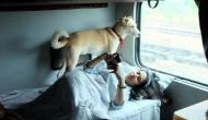अब अपने डॉगी के साथ लें ट्रेन में सफर का आनंद, रेलवे शुरु करने जा रहा है ये खास सुविधा