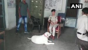 कुत्ते की वजह से महिला पुलिसकर्मी की खूब हो रही तारीफ, वजह जानकर आप भी करेंगे सलाम