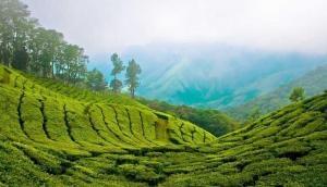 IRCTC दे रहा कम बजट में केरल की खूबसूरत वादियां घूमने का मौका