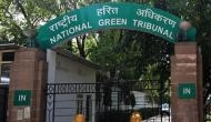 UP: NGT directs Ghaziabad DM to update on encroachment near Hindon Bird Sanctuary