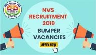 NVS Recruitment 2019: Job alert! 2370 vacancies for PGTs, TGTs and other posts released at navodaya.gov.in