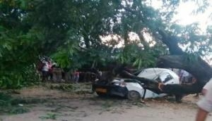 Nagaland: Two killed as tree falls on taxi in Dimapur