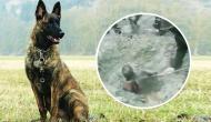 Video: भूस्खलन में कई घंटे पहले दबा था युवक, गुजर रहे CRPF के खोजी कुत्ते ने सूंघ कर बचाई जिंदगी