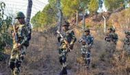 पाकिस्तान ने फिर की 'नापाक' हरकत, जम्मू-कश्मीर के नौशेरा सेक्टर में किया सीजफायर का उल्लंघन