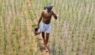 कोरोना संकट: किसानों के लिए बड़ी खुशखबरी, BJP सरकार ने रिजर्व किए 22 हजार करोड़ रुपये