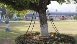 नशे में धुत अंगरेज अधिकारी ने जंजीरों में कैद कराया था बरगद का पेड़, वजह जानकर रह जाएंगे दंग