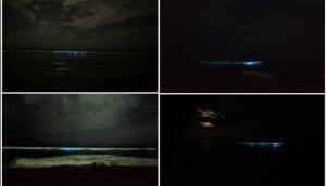 Video: यहां समुद्र की लहरों में दिखाई दी रहस्यमयी नीली रोशनी, देखकर दूर भाग गए लोग