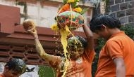 As Mumbai gears for Dahi Handi, safety also concern for organisers, participants