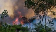 अमेजन के जंगल में लगी आग बुझाने के लिए G-7 से मिली आर्थिक मदद लेने से ब्राजील का इनकार