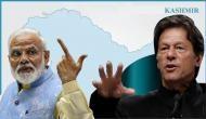 कश्मीर मुद्दे पर आखिरकार हार ही गया पाकिस्तान ! बोला- भारत की बात गंभीरता से मानता है अंतरराष्ट्रीय समुदाय