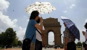 Delhi: Warm morning in city; light rains expected predicts IMD
