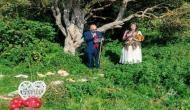 पेड़ों को बचाने के लिए महिला की अनोखी पहल, जानिए जागरुकता का नया तरीका