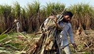 UP govt asks sugar mills to clear dues of farmers by Oct 31, warns action