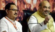 रिपोर्ट: अमित शाह छोड़ेंगे BJP अध्यक्ष का पद ! फुल टाइम प्रेसीडेंट बन सकते हैं जेपी नड्डा
