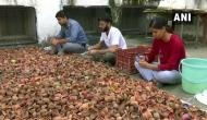 Chandigarh-based youth organisation plans to recycle used 'diyas' to keep environment clean