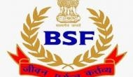 BSF pilot accused of impersonating senior to fly Amit Shah's plane tenders resignation