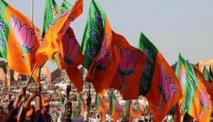 Karnataka assembly by-polls: BJP releases list of star campaigners