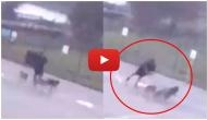 OMG! Man gets hit by lightning while walking his three dogs; video goes viral