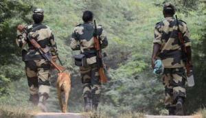 Punjab: Pakistan intruder killed by BSF personnel
