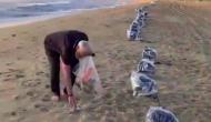 Video: सुबह-सबेरे उठकर समुद्र के किनारे कूड़ा बीनते दिखे PM मोदी, देखकर आप भी करेंगे सलाम