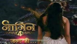 Naagin 4: Ekta Kapoor's supernatural show not to telecast in October; here's the shocking reason