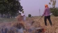 Do not blame us for air pollution: Punjab Farmers