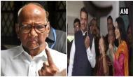 Maharashtra Polls: CM Devendra Fadnavis, Sharad Pawar cast their votes; urge people to join 'festival of democracy'