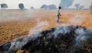 पंजाब में पिछले दो हफ्तों में 1200 से ज्यादा पराली जलाने के मामले, दिल्ली वालों के लिए जान की आफत