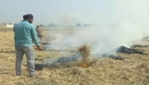 Stubble burning: 29 farmers fined in UP's Muzaffarnagar