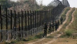 J-K: Pakistan violates ceasefire in Jammu