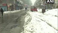 J-K: Srinagar receives snowfall