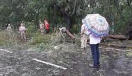 Cyclone 'Bulbul' makes landfall, two deaths reported