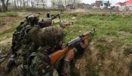 कश्मीर के बांदीपुरा में मुठभेड़ के दौरान सुरक्षाबलों ने मार गिराए दो आतंकी