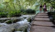National parks provide mental health boost worth trillions: Study