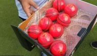 भारत और बांग्लादेश के बीच डे-नाइट टेस्ट मैच से जुड़ी हर बात जो आपको जाननी चाहिए