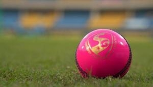 Science behind the 'Pink Ball': Mohammed Shami, Umesh Yadav stand to lose?