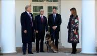 व्हाइट हाउस को नहीं पता जिसने बगदादी को मारा वो कुत्ता है या फिर...!