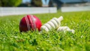 क्रिकेट मैच के दौरान विवाद, जमकर चली गोलियां और सात खिलाड़ियों की चली गई जान